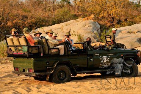 Khimbini on safari
