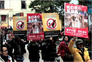 chinese activists