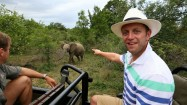 Exciting game drive