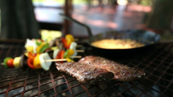 Springbok fillet & veg on grill
