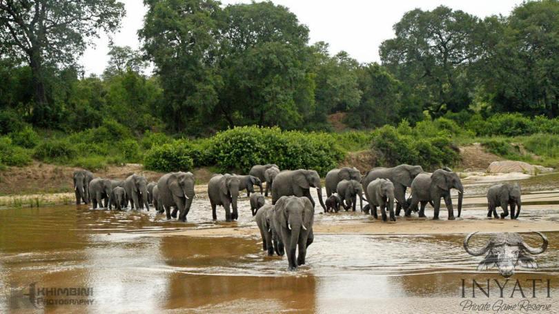 Most diverse wildlife in Africa