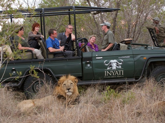 Safety with lions on safari – Written by: Onne Vegter