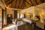 authentic African safari