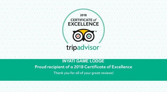 Inyati Game Lodge Earns 2018 TripAdvisor®  Certificate Of Excellence